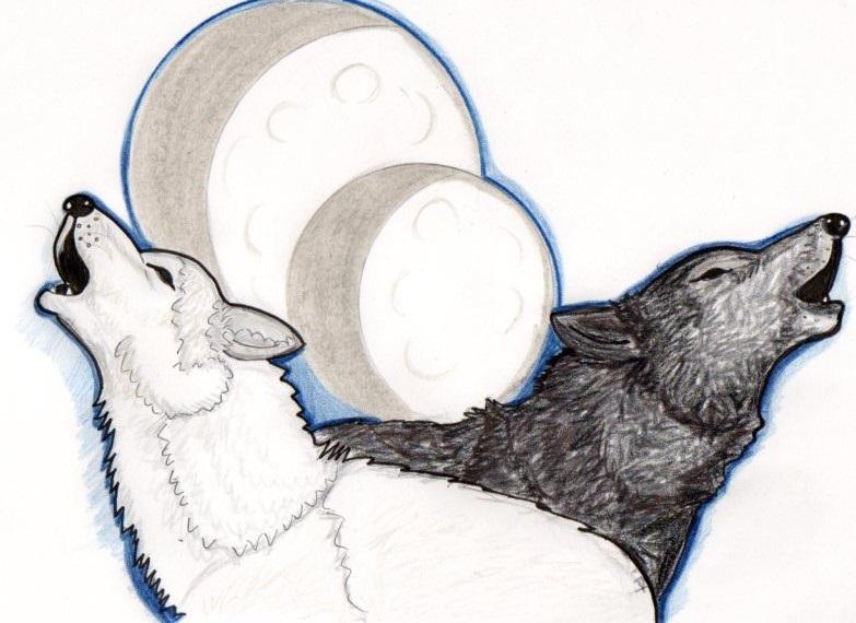 Moonmist & Cubsitter:  pack leaders RTH 2486 - 2490 (2013 Treasure Hunt)