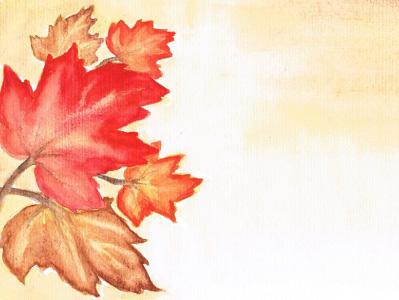 Maple - 2015 Fall Quarter Award